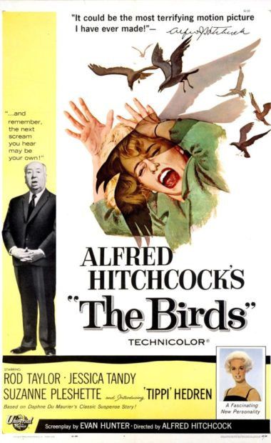theatrical poster for the birds