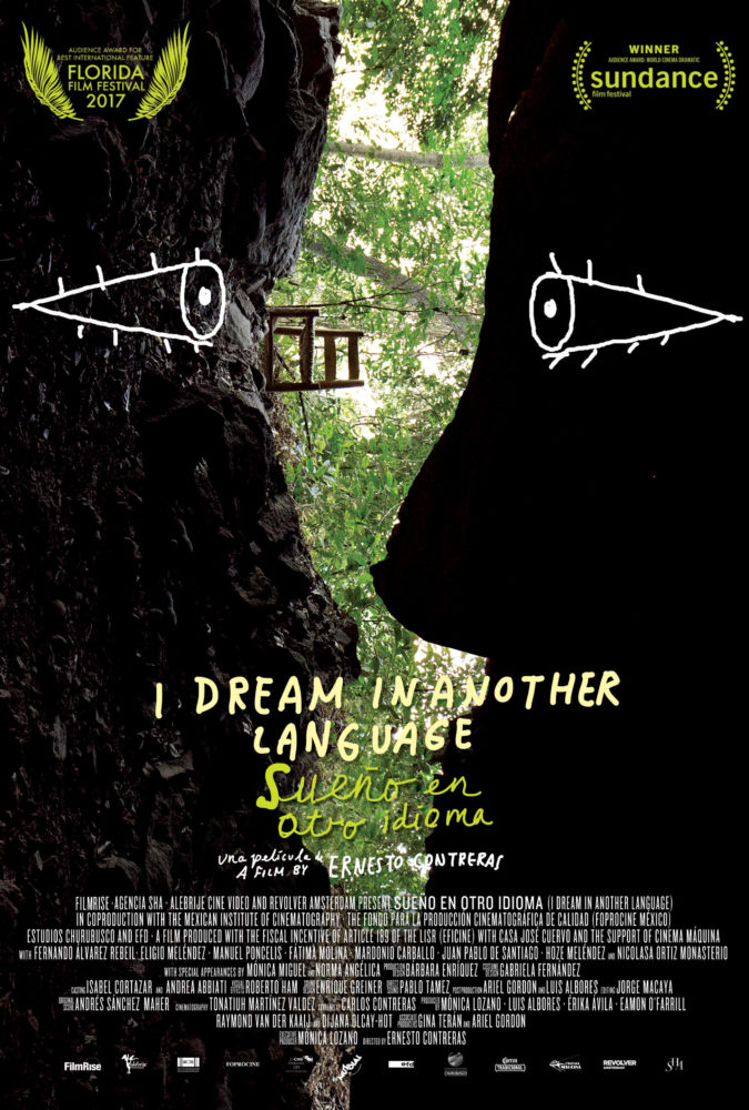theatrical poster for i dream in another language